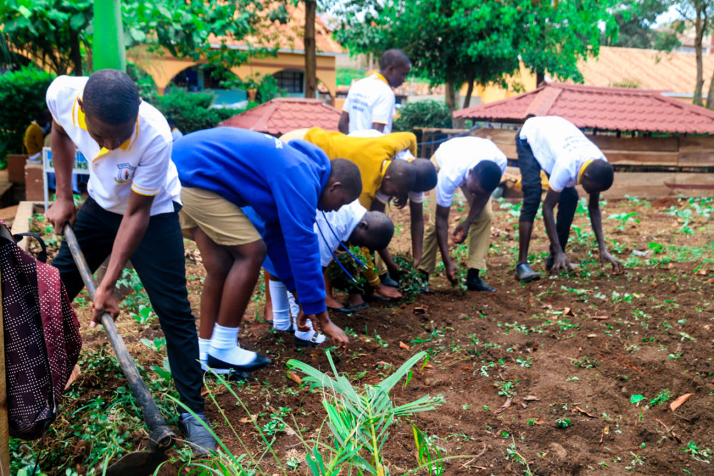 Smart agriculture at St Kizito High School