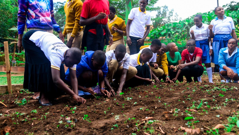 St Kizito Namugongo students in the school urban garden