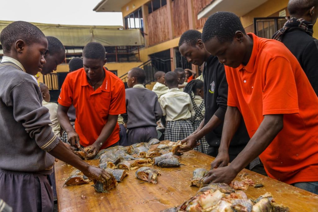 fish harvest during the fish festival